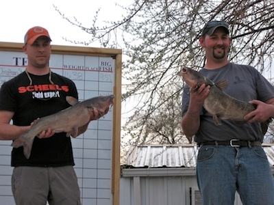 Record Numbers of Catfish Caught at Challenge